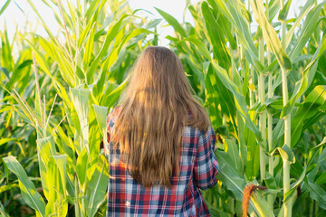 Girl in flannel shirt stands in corn rows