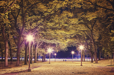 City park at night, color toning applied, Chicago, USA.