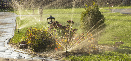A rotating sprinkler spraying a water into the backyard