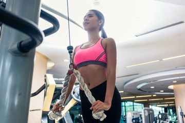 Low-angle view of a beautiful Indonesian woman with flat abdomen wearing pink sports bra while exercising cable rope triceps extension at the gym
