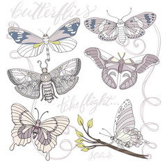 Purple Butterflies, Hand Drawn, Whimsical Isolated Vector Illustrations