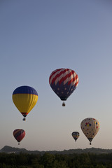 Colorful Hot Air Balloons in Flight Early in the Morning