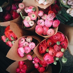 Bunches of ranunculus flowers