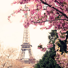 Papiers peints Con. ancienne Eiffel Tower and Cherry blossoms in spring in Paris