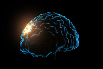 Human brain with neuronal impulses. Spinning. Loopable. Blue. Black and white. Science. More options in my portfolio. 3d illustration