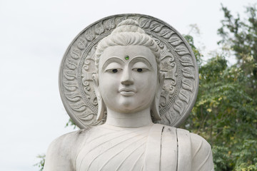 close up buddha