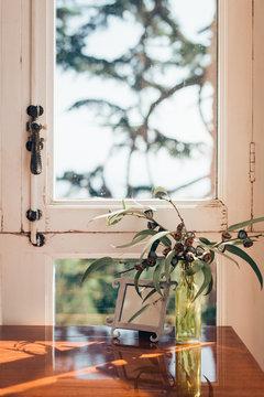 Little branch in front a window