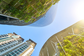 Panoramic and perspective wide angle view of steel and glass city buildings with clear sky and green background . Kuala Lumpur , Malaysia .