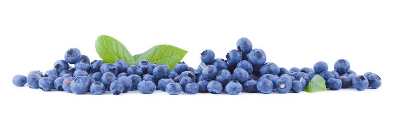 Fresh blueberries panoramic
