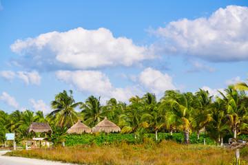 Holbox island palm tree huts Mexico