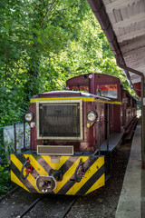 Lillafured forest train, Hungary