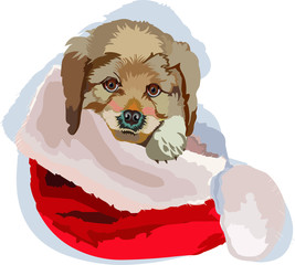 Christmas puppy New Year vector illustration isolated