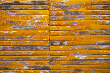 Mahahual Caribbean yellow wood painted wall