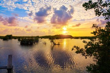 Mangroove sunset in Riviera Maya