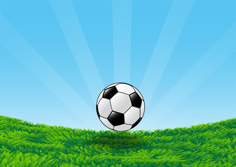 Soccer Ball on Grass Field with blue sky-Vector Illustration