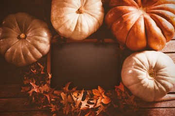 Diverse pumpkin surround black screen and leaf