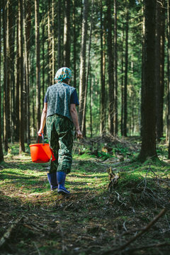 Mature woman with red bucket walking in the forest looking for mushrooms