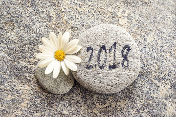 2018 written on a stone background with a daisy