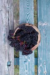 Elderberry fruit in wooden bowl