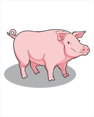 Realistic Pig-vector drawing-isolated white background