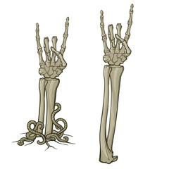 Zombie body language. Sign of the horns. Pair of skeleton hands rising from the ground and torn apart. Monochrome drawing isolated on white background. EPS10 vector
