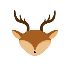 deer head wild cute animal
