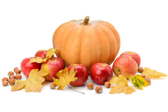 Pumpkin, apples and hazel isolated on white