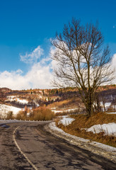 naked tree by the curve road in winter. lovely transportation scenery in mountains under the blue cloudy sky