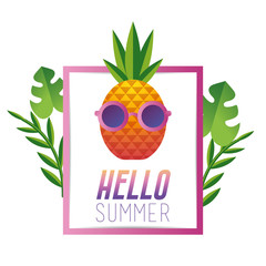 summer vacation with tropical pineapple fruit