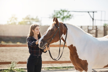 Beautiful young female horse owner taking care of her horse in a farm on a bright sunny day.