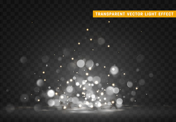 Bokeh lights white color vector.