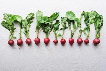 Row of radishes on white background.