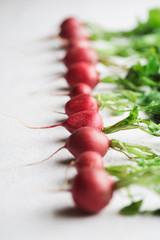 Close up of radishes on white background.