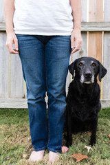 Unidentified person standing next to a black Labrador retriever.