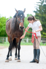 Teenage equestrian girl checking for injury of bay horse leg