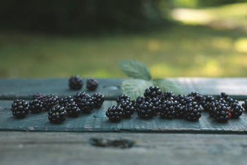 Blackberries on bench