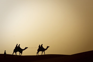 Silhouetted image of camel rides in the desert of Rajasthan, India.