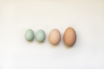 Various sizes of backyard chicken eggs.