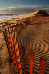 Snowfencing at the Beach