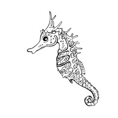 Seahorse. Hand-drawn inhabitant of the underwater world