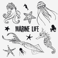 Set of linear marine life in the sketch style octopus, jellyfish, two starfish, seahorse, squid