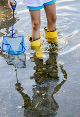 Girl wades in shallow river water with a net