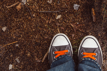 Shoes with orange laces on a hiking trail in the fall 7e479accc