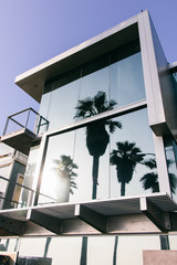 Modern building with palm trees reflection in Los Angeles
