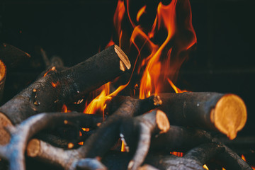 Blazing firewoods in close-up.