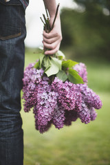 Hand holding a bunch of  lilacs
