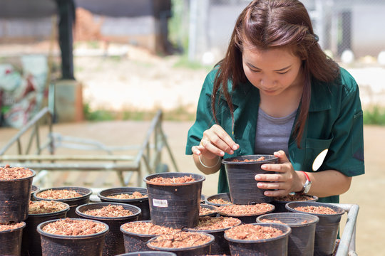 student is checking a quality of soil