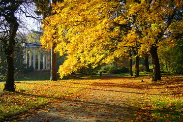 Beautiful autumn landscape - autumn alley and stone pergola - golden autumn in park
