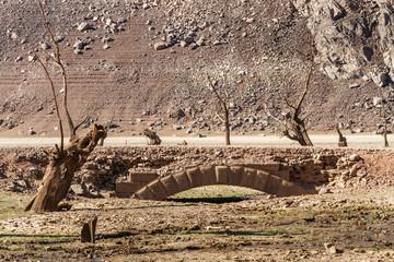 Puente antiguo de piedra y árboles secos emergidos del Embalse de Barrios de Luna, León, España.