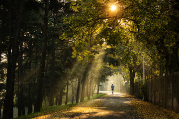 Man running in a park with beautiful rays of light in autumn morning